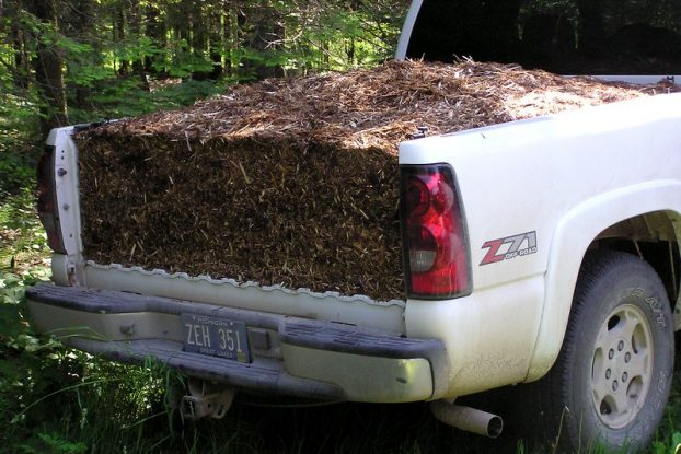 How Many Yards of Mulch in a Pickup Truck?